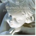 Selección vocal y coral de obras de Bach