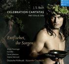celebration-cantatas