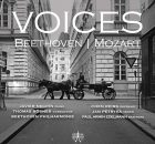 voices-mozart-beethoven